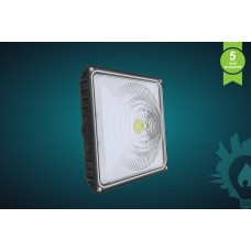35W LED Canopy Light 4000K